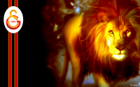 1689913-Galatasaray SK,lions.png